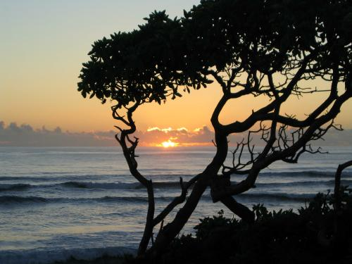 Sunrise- Kauai: Click for more pictures